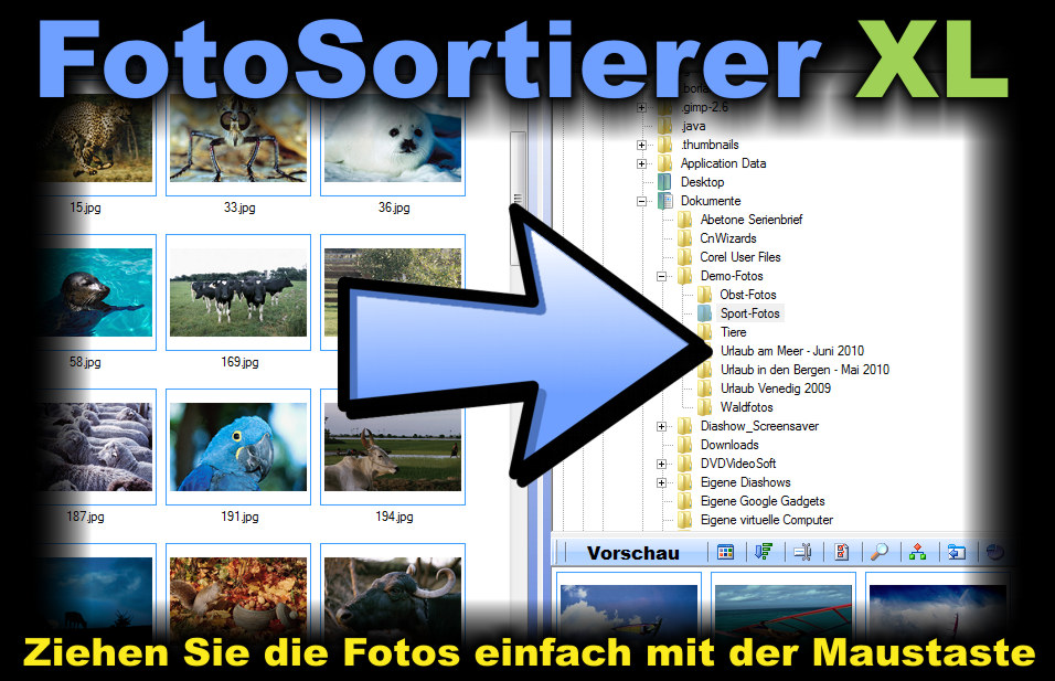 foto duplikate finden windows 10